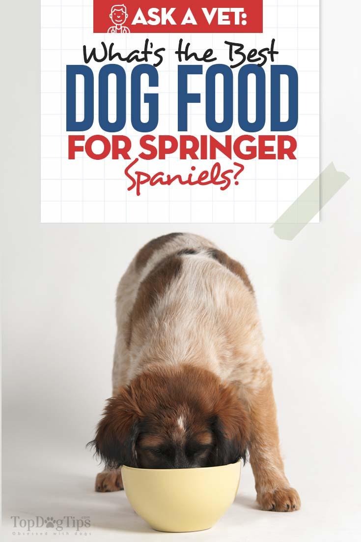 Vet's Best Dog Food for Springer Spaniels