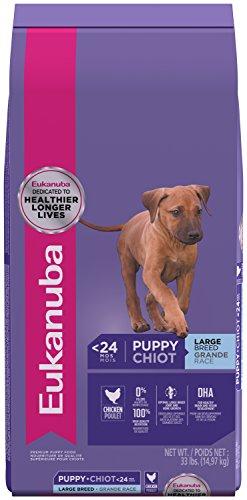 Eukanuba Large Breed Puppy Formula