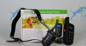 EliteField Dog Training Collar