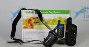 EliteField Dog Training Collar