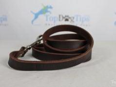 Leatherberg Leash Giveaway