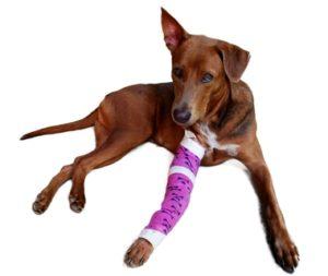 Pain related to broken bones