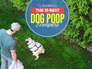 Top 15 Best Dog Poop Scoopers
