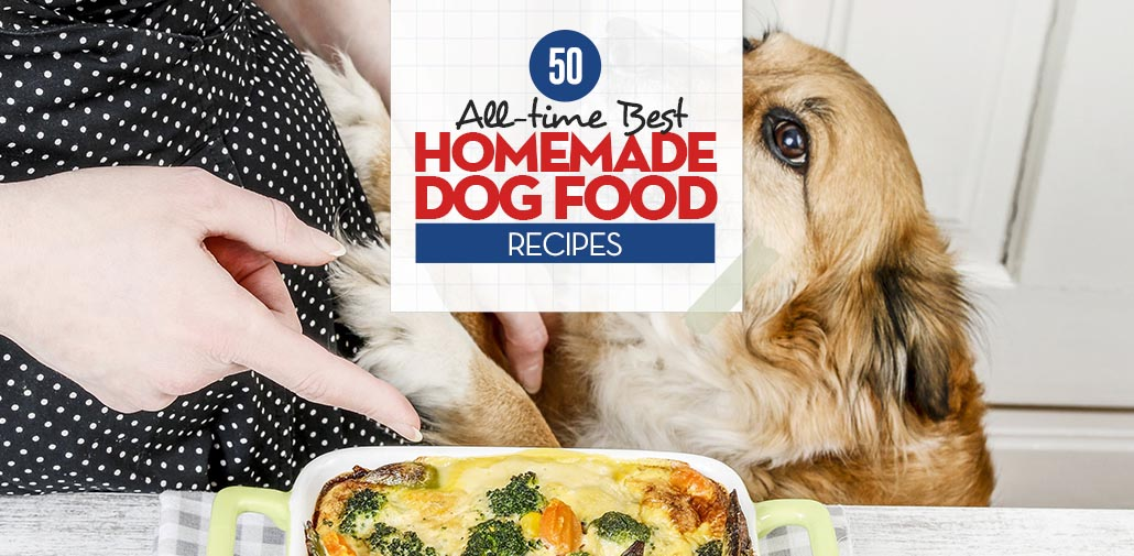 50 best homemade dog food recipes to replace dry kibble top best homemade dog food recipes forumfinder Choice Image