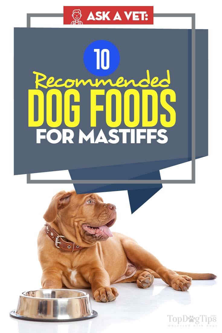 Vets Best Dog Food for Mastiffs