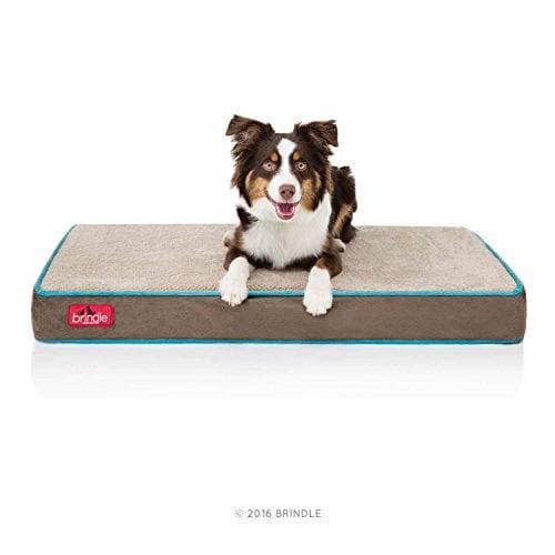7 brindle 4 inch solid memory foam orthopedic dog bed