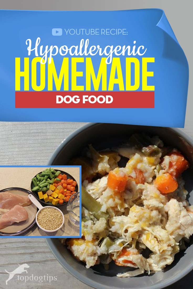 Cheap Hypoallergenic Homemade Dog Food Recipe