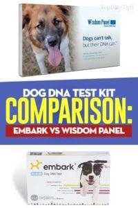 Dog DNA Kit Comparison