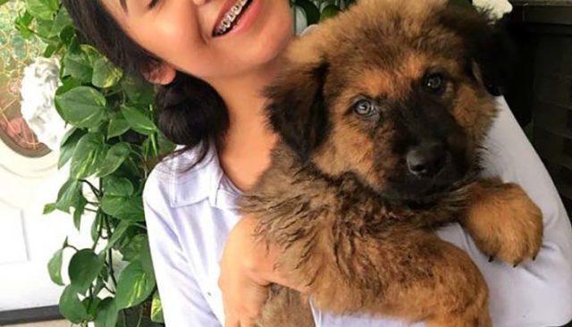 Every Aniversary Couple Adopts a Dog