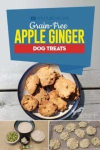 Healthy Grain-Free Apple Ginger Dog Treats