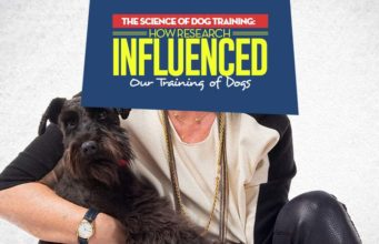 How Research Influenced Our Approach to Training Dogs