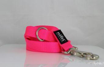 Nifti SafeLatch Dog Leash Giveaway