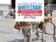 Tips for DIY Dog Wheelchair