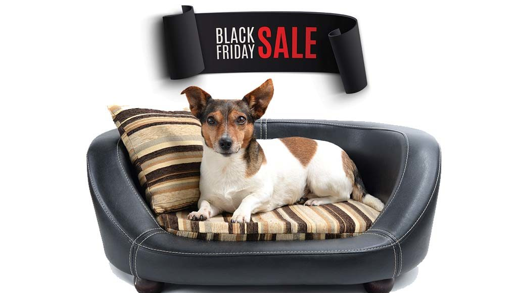 Best Black Friday Dog Beds Deals
