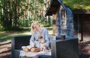 Dog Friendly Holiday Homes