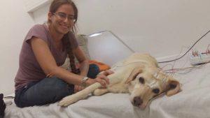 Dog sleep stress study