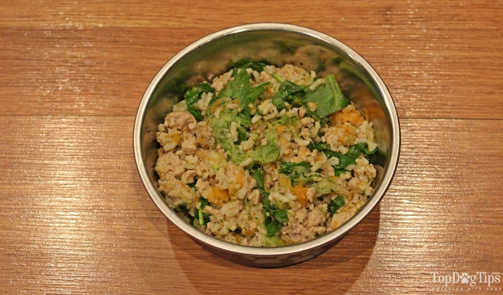 how to cook rice for dogs