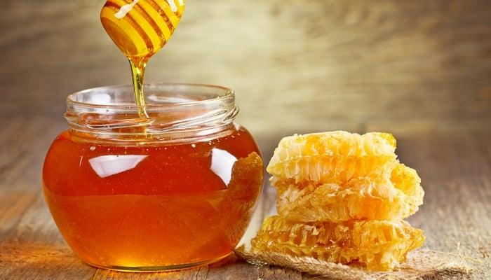 Honey for Dogs