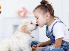 How Kids and Dogs Help Each Other