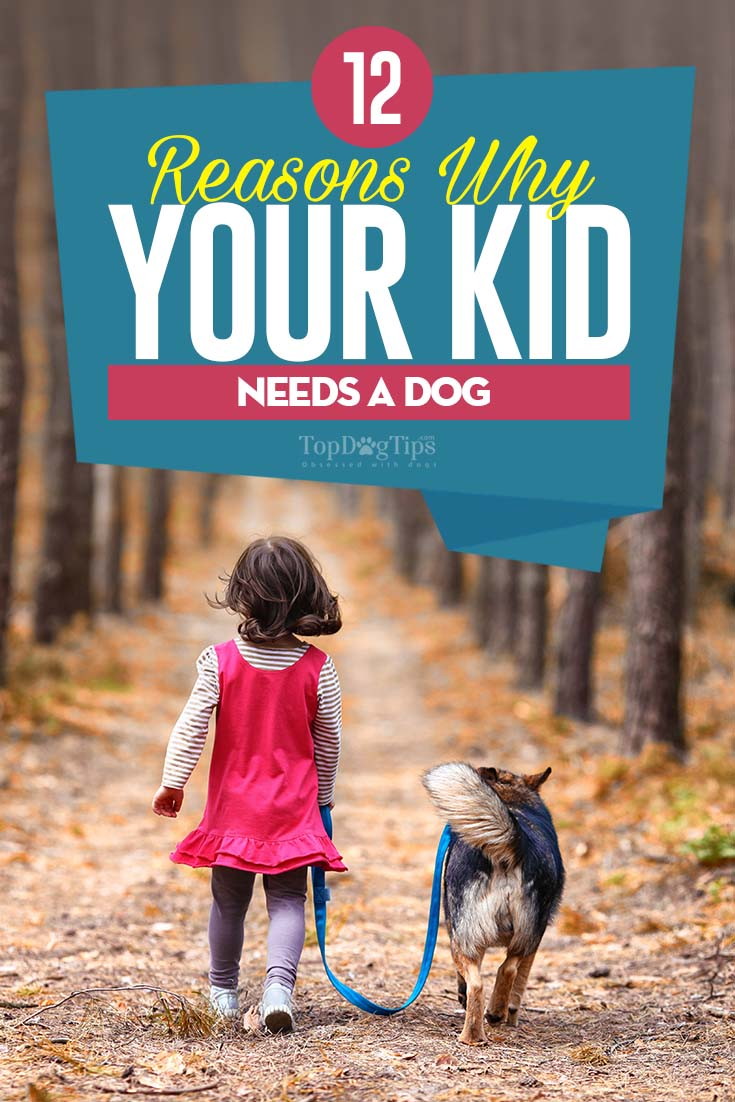 Reasons Why Makeup Is Important: 12 Reasons Why Kids Need A Dog (and How Pets Benefit Children