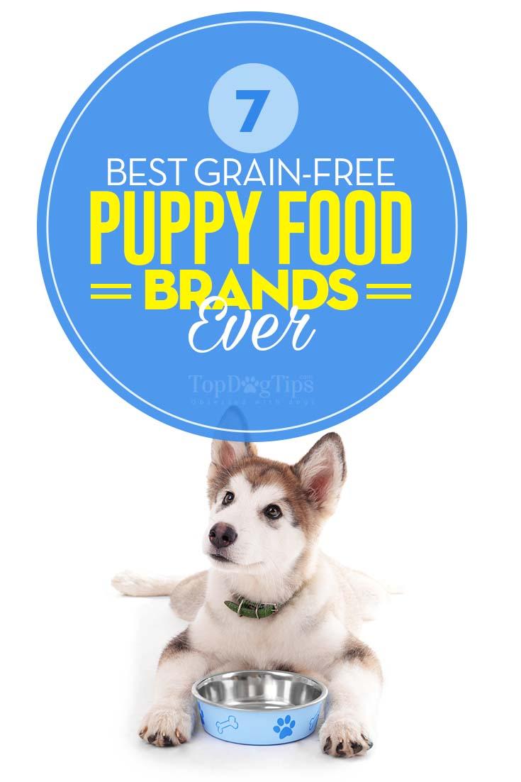 Menu Foods Dog Food Brands