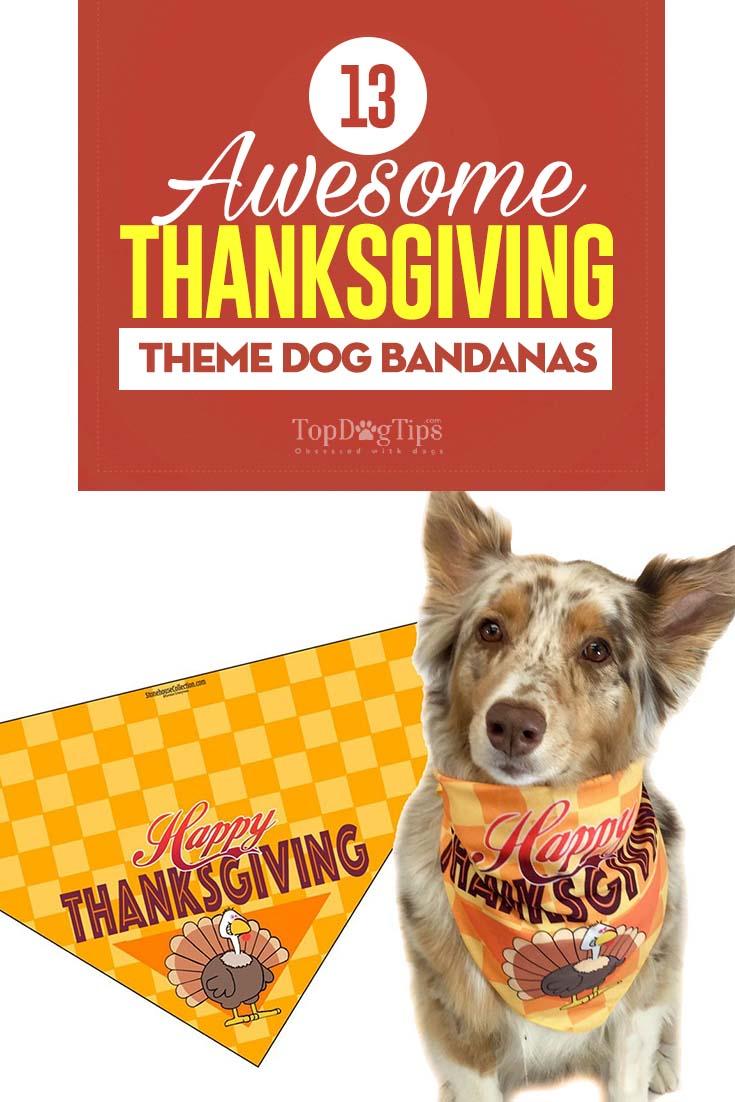The Best Thanksgiving Dog Bandanas