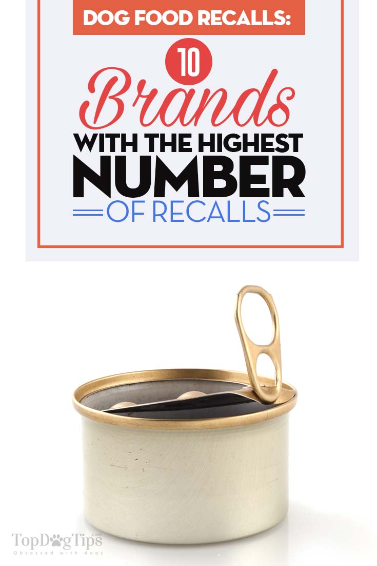 The Brands With Most Dog Food Recalls