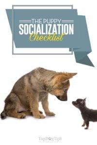 The Puppy Socialization Checklist