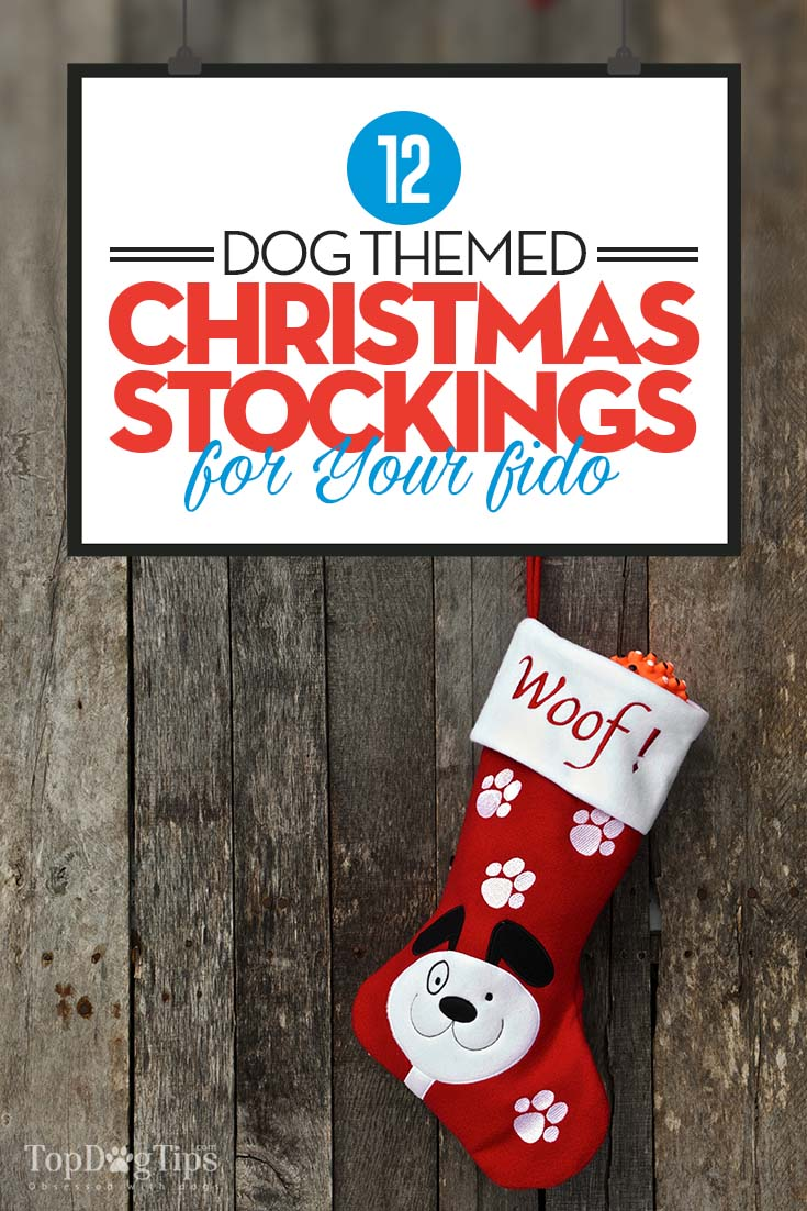 Top Best Dog Christmas Stockings