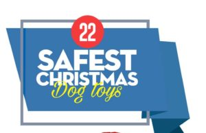 Top Safe Christmas Dog Toys