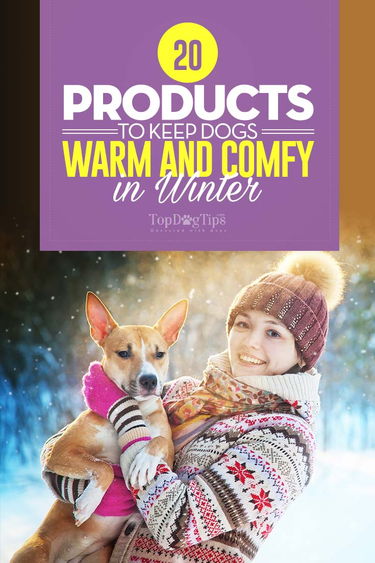 Top Things to Keep Dogs Warm in Winter