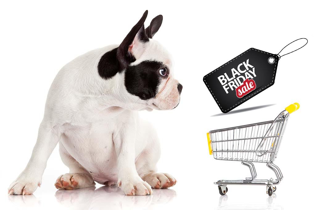 UPDATE Best Black Friday Deals Dog Supplies