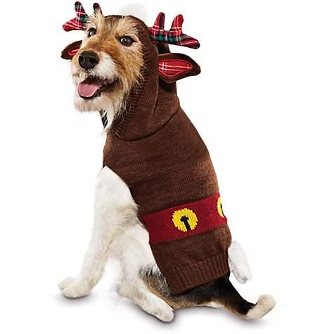 Santa's Reindeer Dog Hoodie