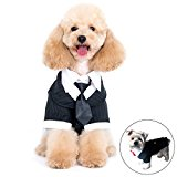 Alfie Pet by Petoga Couture - Oscar Formal Tuxedo