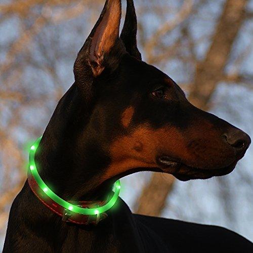 BSeen LED Individual Lights Dog Collar