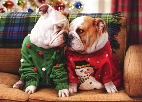 Christmas Bulldogs in Sweaters Greeting Card