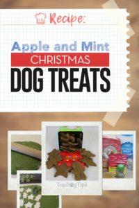 Apple and Mint Christmas Dog Treats Recipe