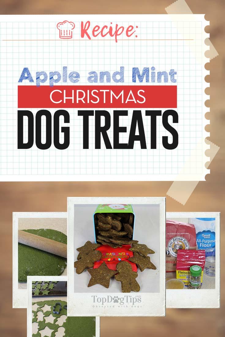 Recipe Homemade Apple And Mint Christmas Dog Treats Video
