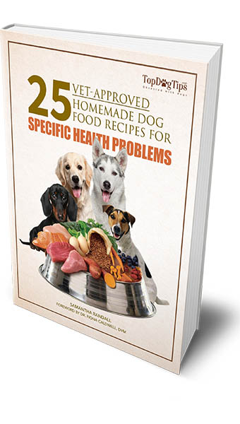 Homemade Dog Food Recipes - Top