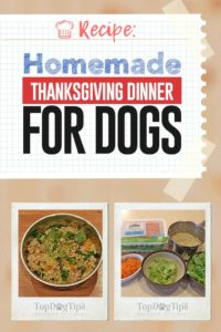 Homemade Thanksgiving Dinner for Dogs Recipe