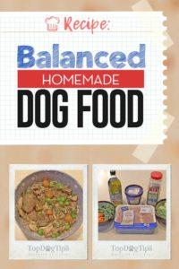 Balanced Homemade Dog Food Recipe