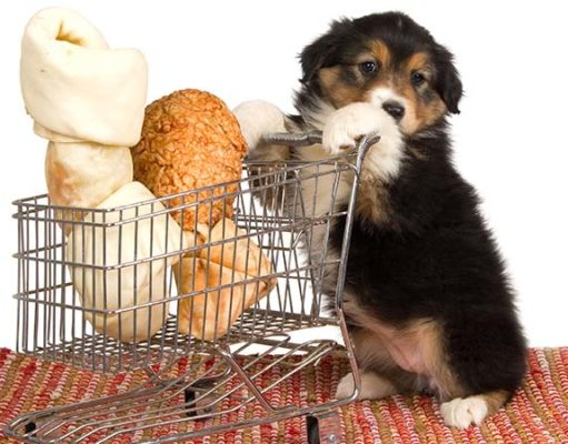 Best Dog Food Coupons and Coupon Sites