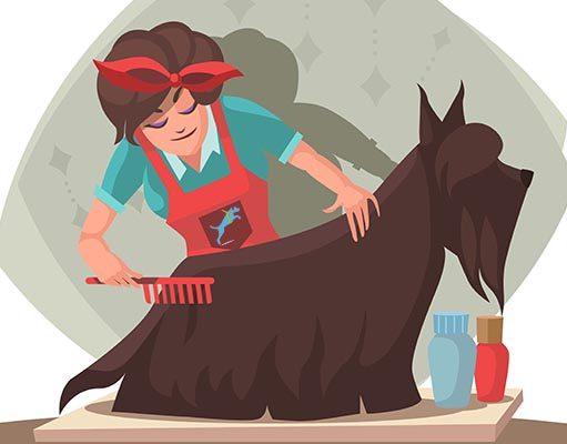 Easy Steps Dog Grooming