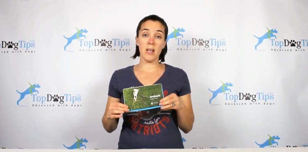 Embark dog DNA kit test review