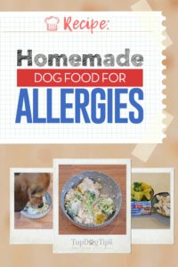 Homemade Dog Food for Allergies Recipe
