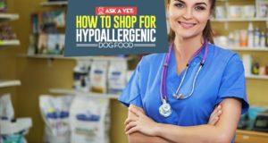 Hypoallergenic Dog Foods - The Vet's Buying Guide