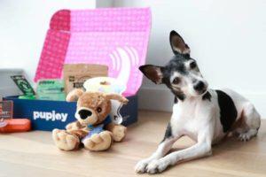 PupJoy Dog Box