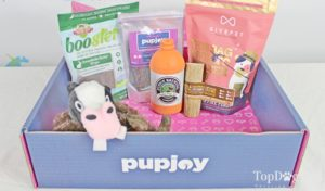 The 3rd best dog subscription box