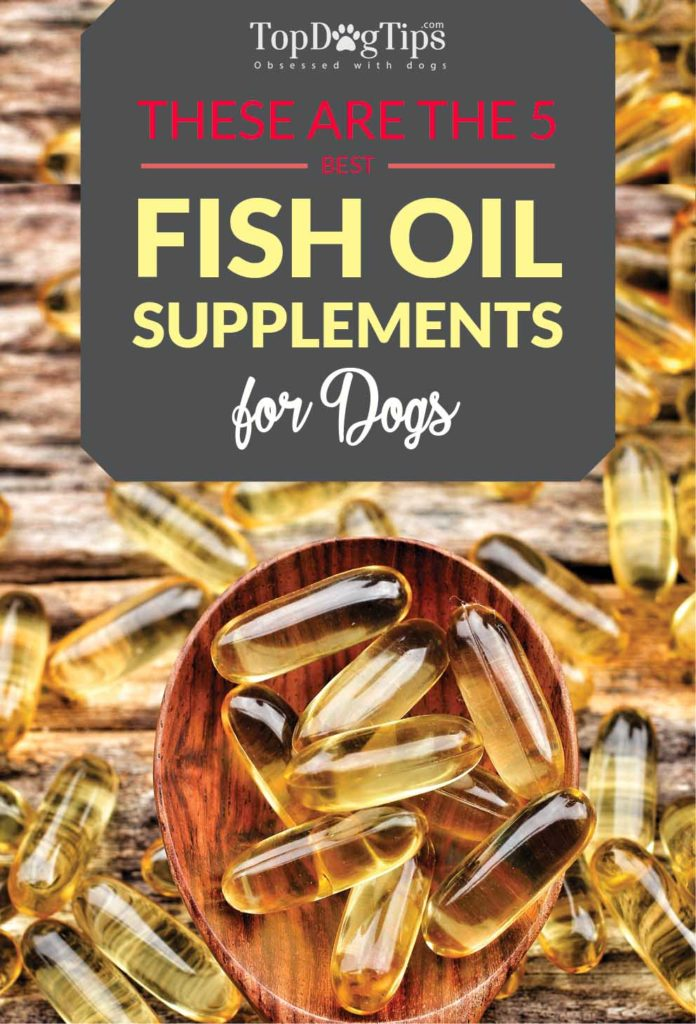 The Best Fish Oil for Dogs Supplements for Health