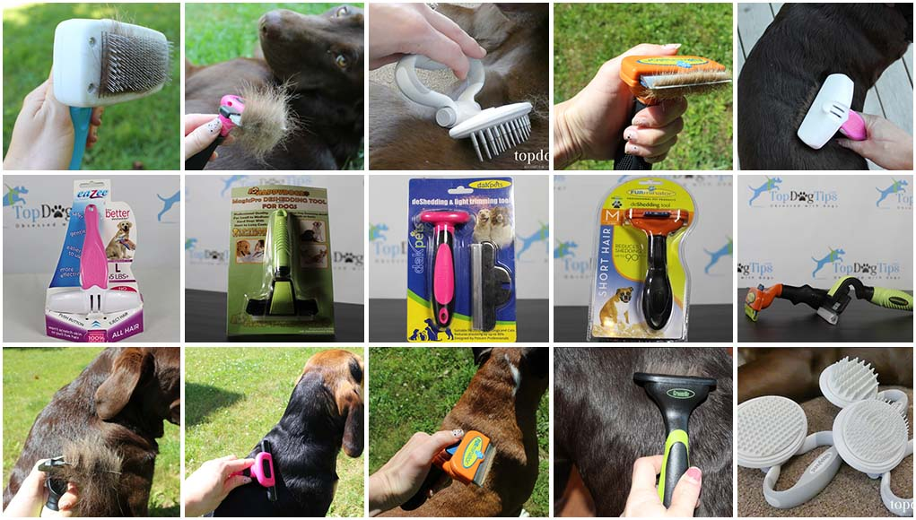 10 Best Deshedding Tool For Dogs In 2020 Tested Rated Different Types